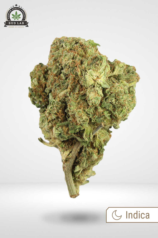 Rock Star Weed Bud Lab display image