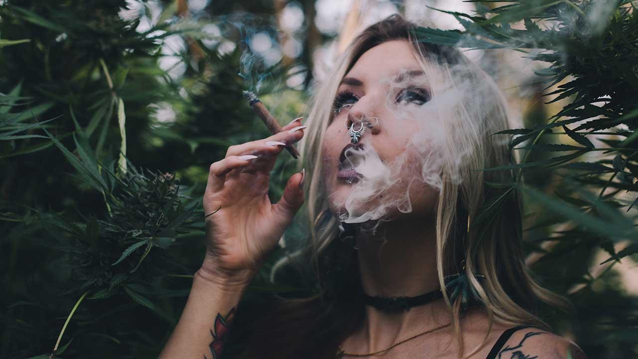 Update: Canadian Marijuana Legalization