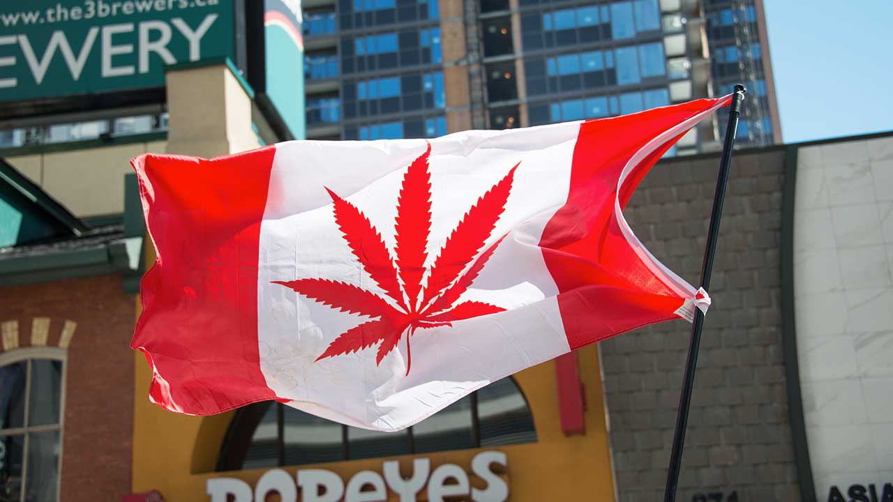 Buying Weed Online in Canada: Things to Consider When Choosing Who to Order From