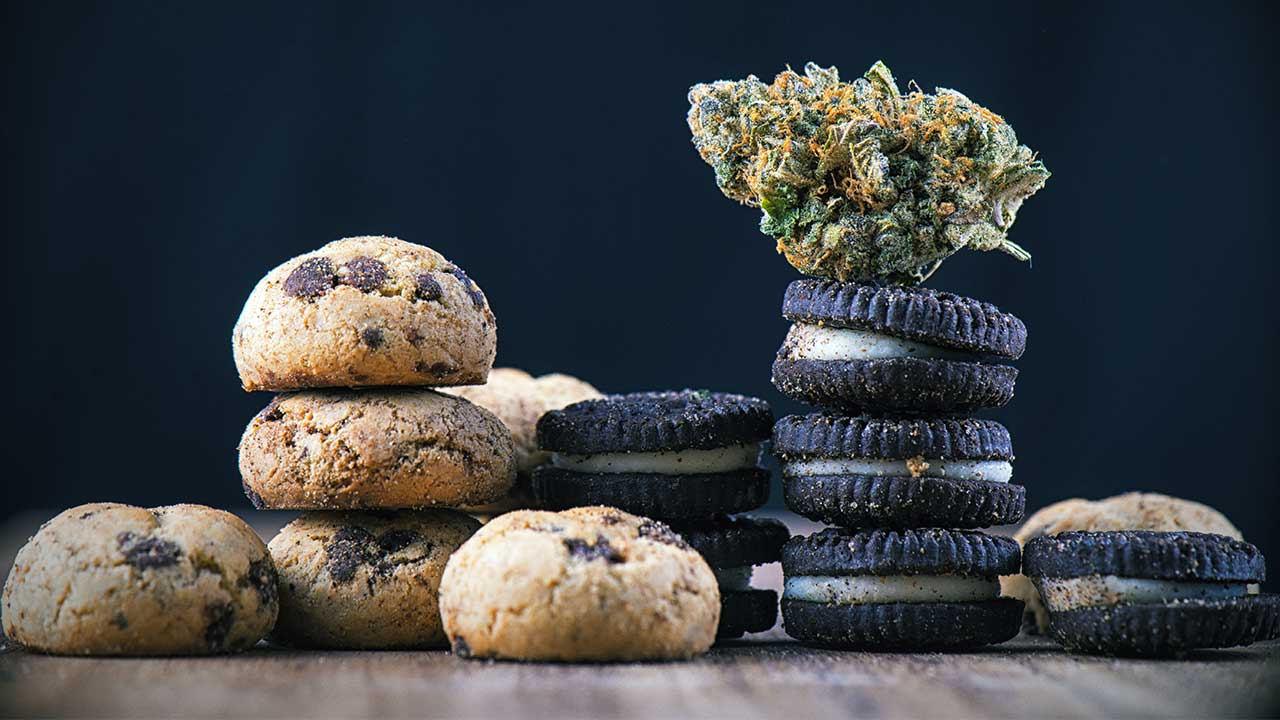Edibles vs Smoking: What are the Effects and Differences