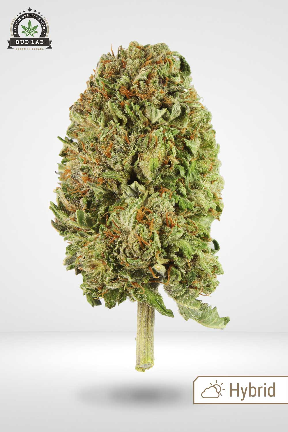 Pink Bubba Weed Flower Bud Lab display image