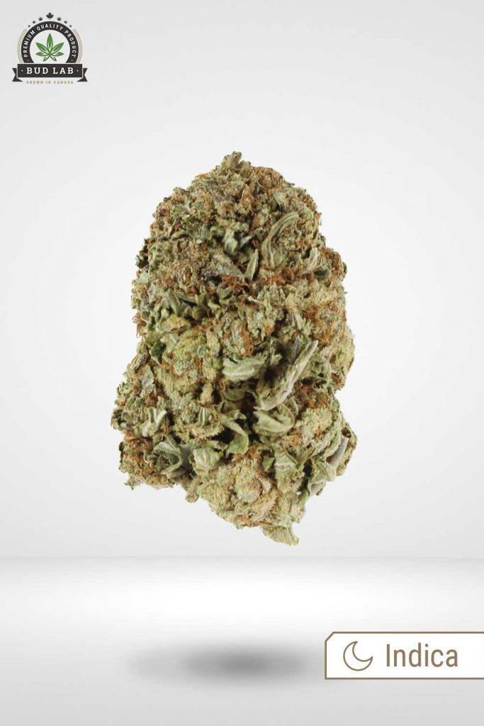 Black Kush AA Weed Indica Strain Bud Lab Front View