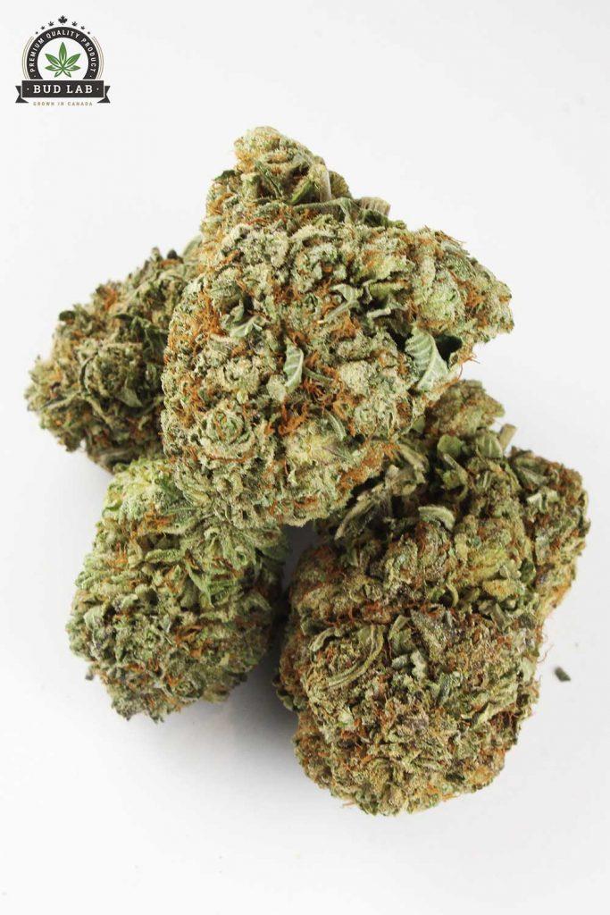 Black Kush AA Weed Nugs Bud Lab View 2