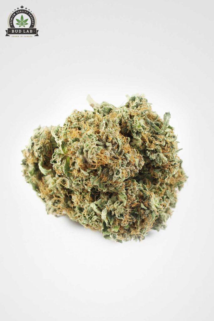 Krazy Glue AAA Weed image