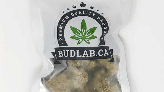 Bud Lab GG Bomb AA Grab Bag Product View