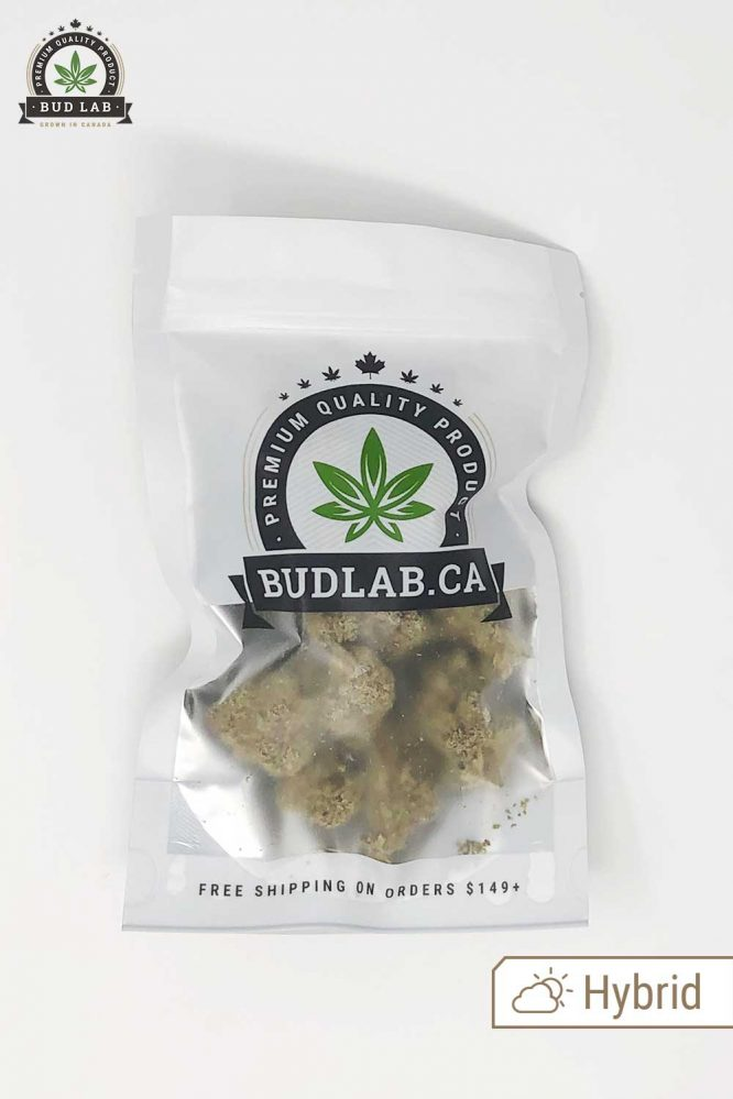 Bud Lab GG Bomb AA Grab Bag Product View