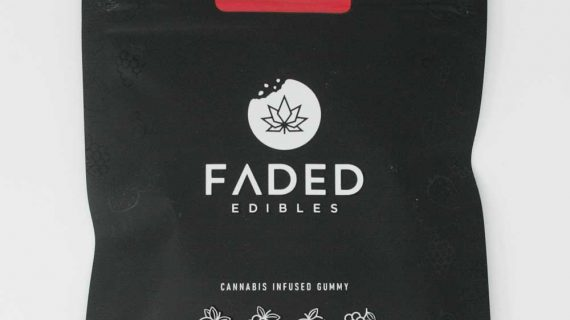 Faded Edibles Fruit Back Hybrid
