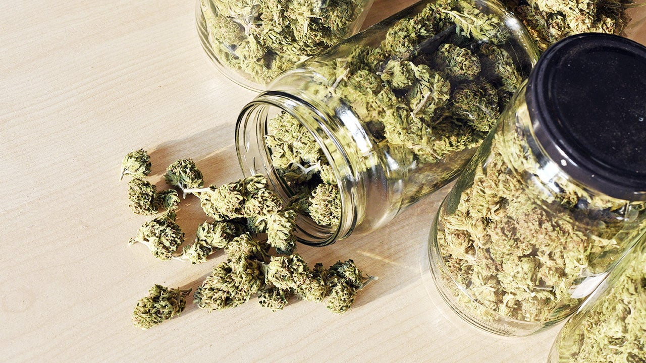 A jar of cannabis laid out on the table