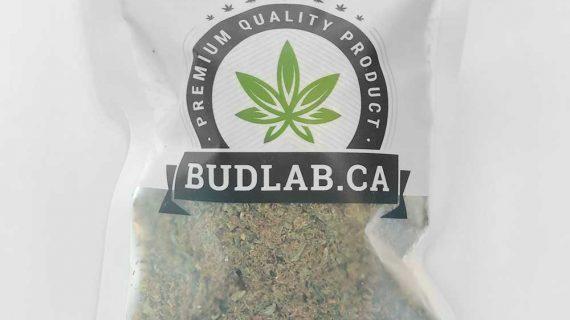 Bud Lab Baking Shake Grab Bag Packaging
