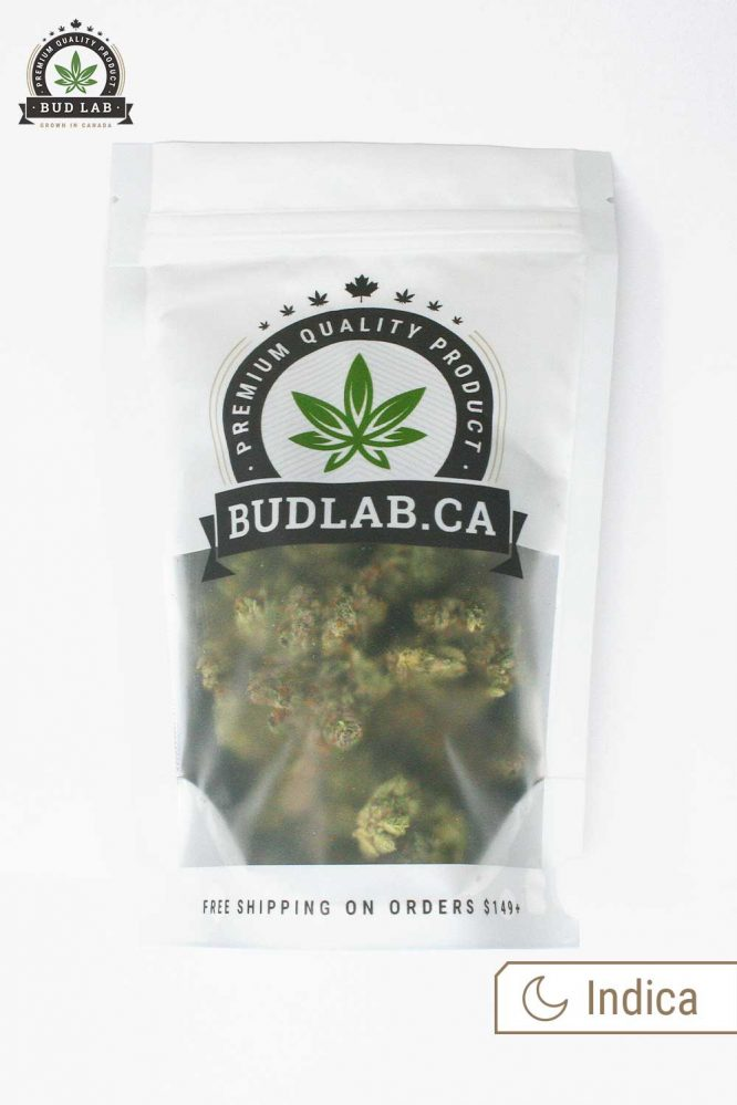 Bud Lab Rockstar AA+ Grab Bag Half Oz