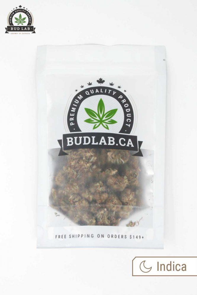 Bud Lab Giga Bud AA Package