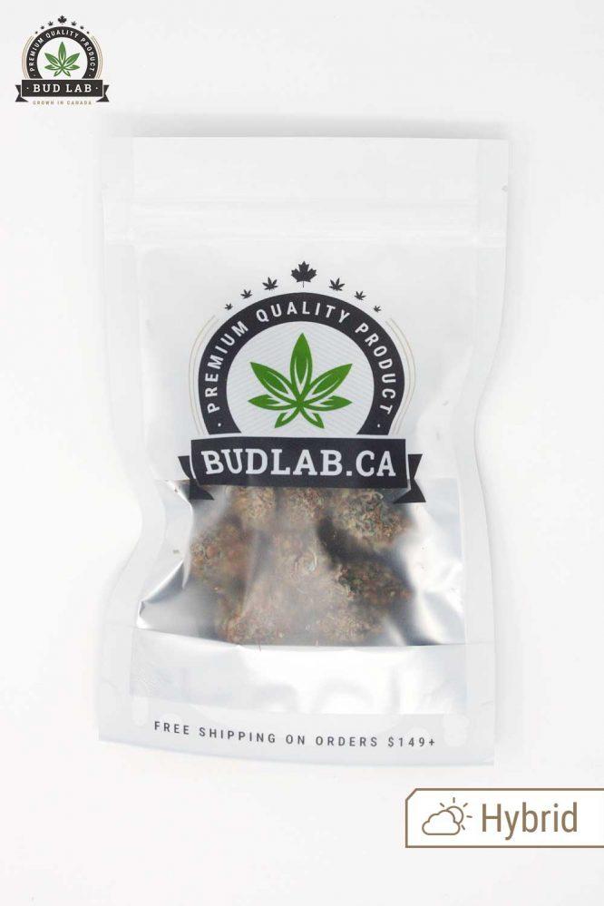 Bud Lab Mystery Strain AA Grab Bag Package