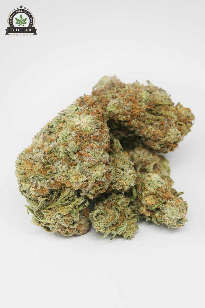 Alien OG, AAAA Cannabis Strain