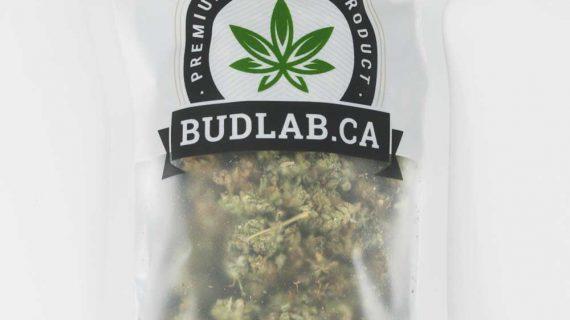 Violator Kush Cannabis Strain, 1 oz Grab Bag Indica