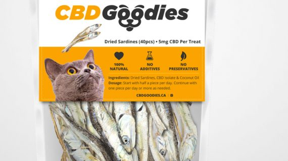 CBD Goodies Medicated Cat Treats 5mg