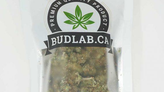 Bud Lab Death Bubba AA Indica