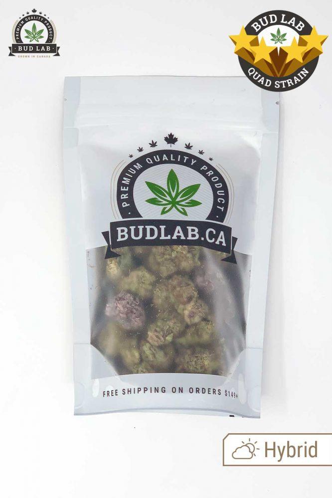 Bud Lab Mendocino Purps AAAA Hybrid 4