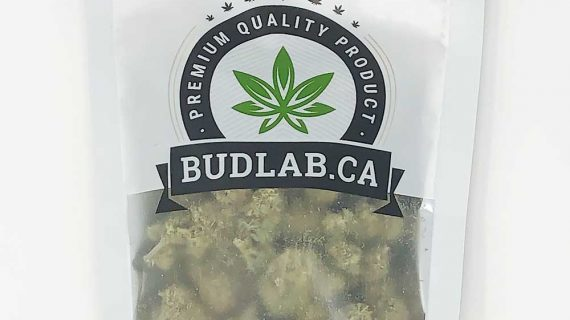 Bud Lab Pineapple Chunk AAA Grab Bag Hybrid