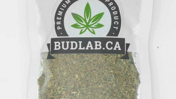 Bud Lab Organic Sour Amnesia Shake Bag Sativa