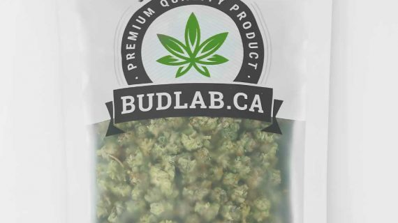 Bud Lab Organic Super Skunk Shake Bag Indica