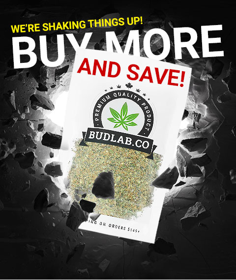 Buy More And Save With Bud Lab Shake Bag 2
