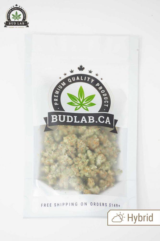 Bud Lab Lemon Sour Diesel AAA Hybrid Small Buds