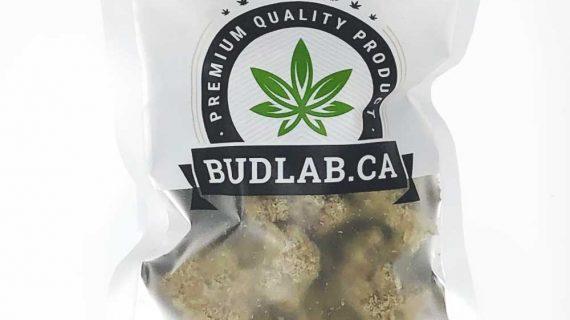 Bud Lab Train Wreck AAA Hybrid Grab Bag