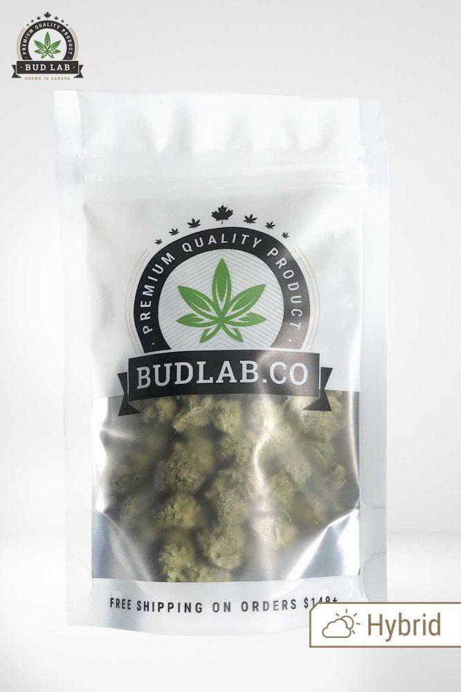 Bud Lab AAA GG Bomb Grab Bag Hybrid