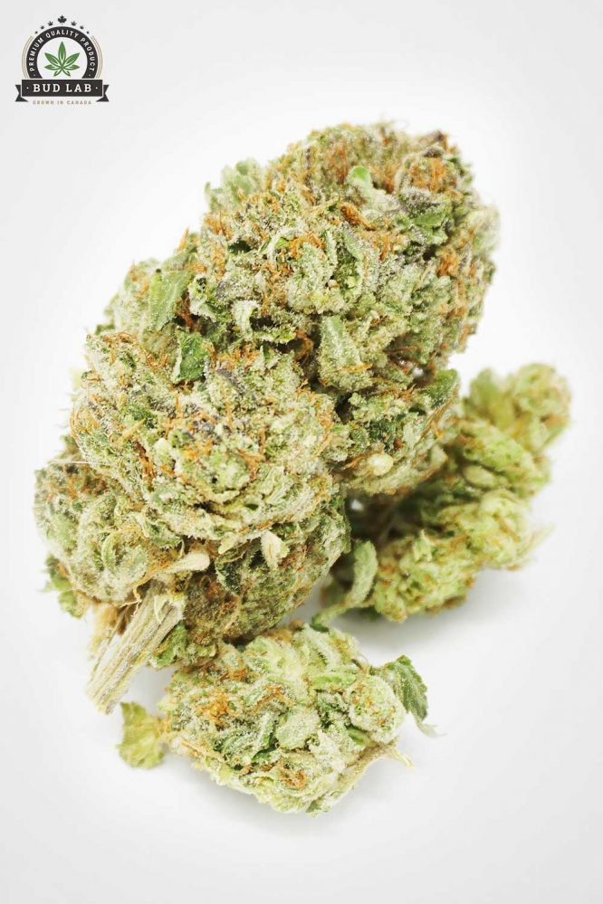 Bud Lab AAA Rated Indica MK Ultra Flower 2