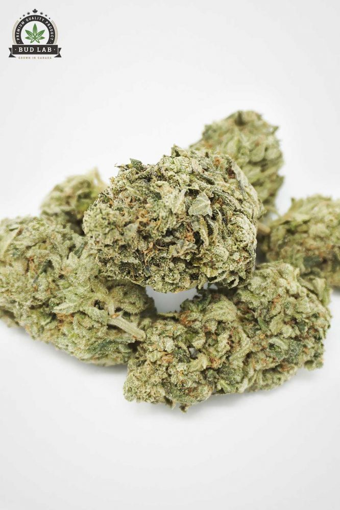 Bud Lab Quad Death Star Indica Bud