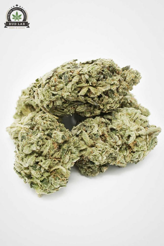 Bud Lab Quad Death Star Indica Flower