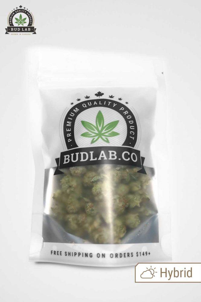Bud Lab AAA Hybrid MK Ultra Grab Bag
