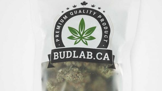 Bud Lab Grab Bag Hybrid Pink OG