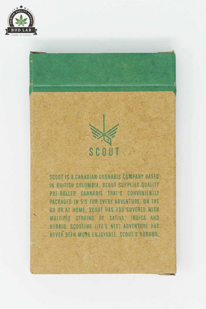 Scout Pre Rolls Hybrid Lucky Charms 5 Pack Back