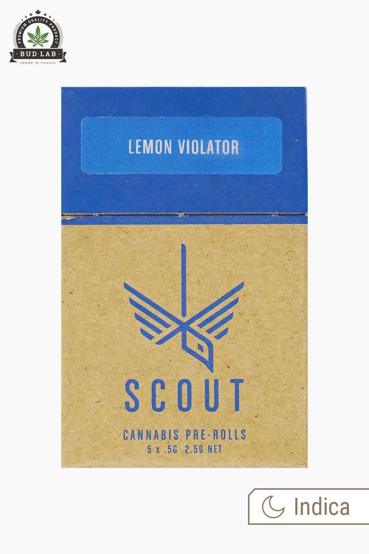 Scout Pre-Rolls Lemon Violator 5 Pack