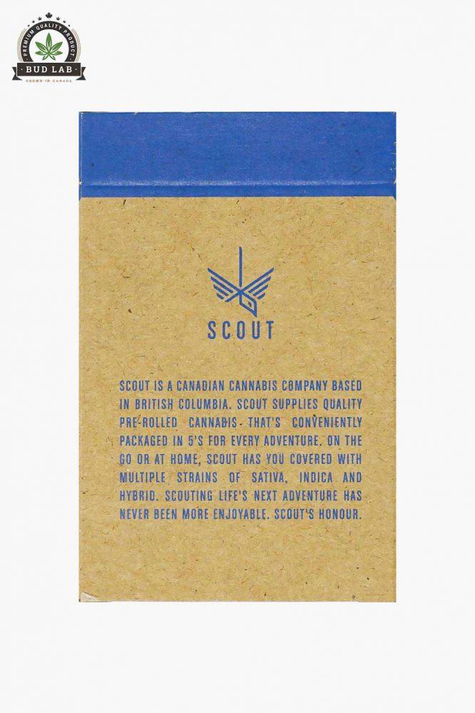 Scout Pre-Rolls Lemon Violator 5 Pack Back