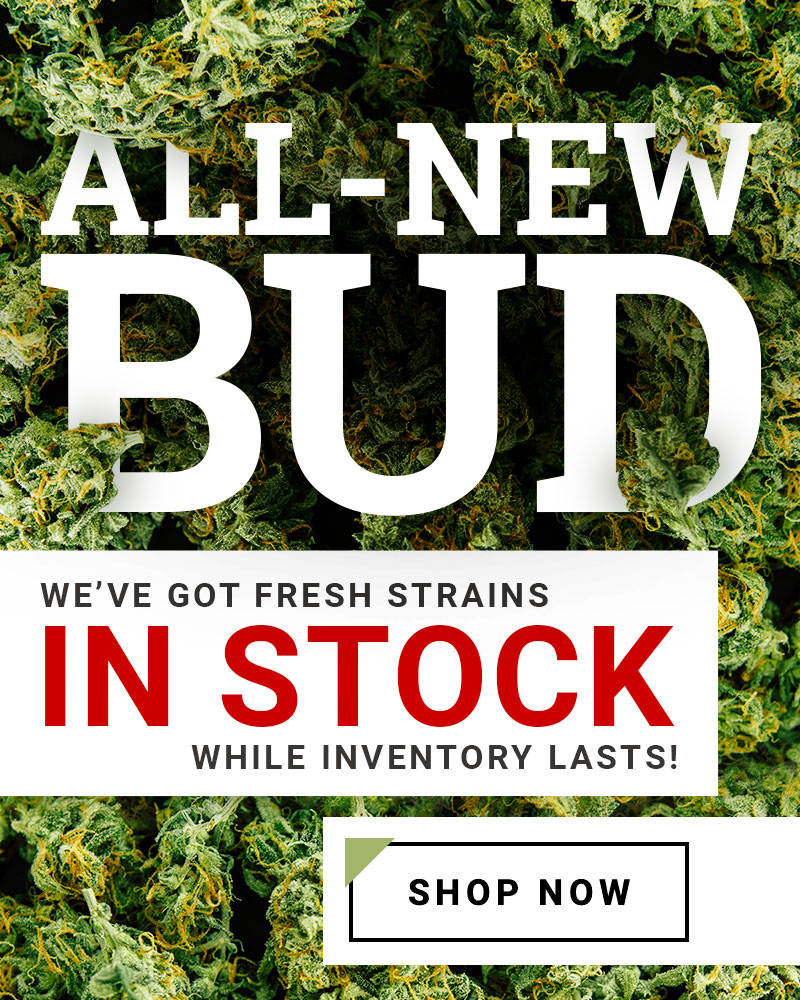 Bud Lab New Strains In Stock Home Slider