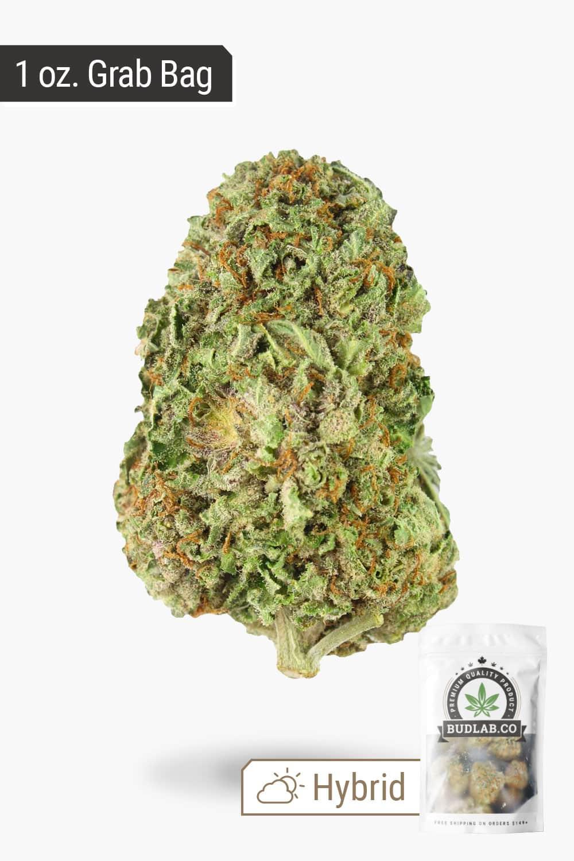 Bud Lab Premium Bud 1 Oz Grab Bag