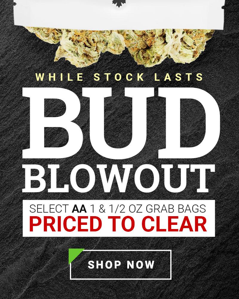 Bud Blowout Home Slider Sale 2