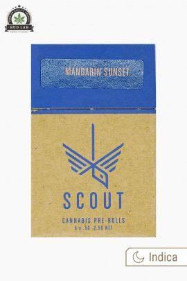 Scout Pre-Rolls Indica Mandarin Sunset