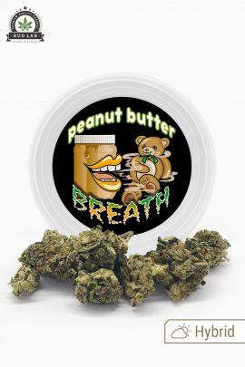 Westcoast Cali Peanut Butter Breath Hybrid