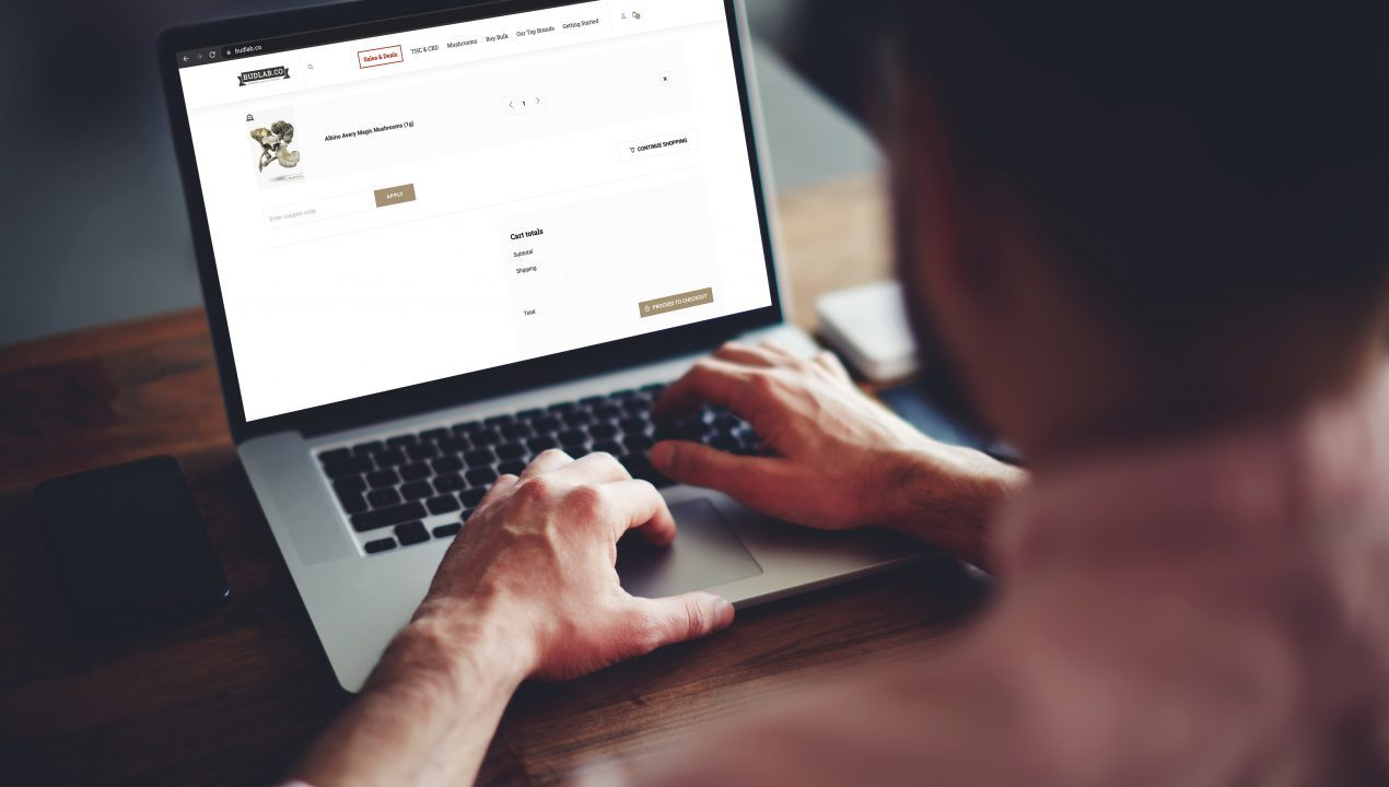 Buying Shrooms Online: How to Send eTransfers