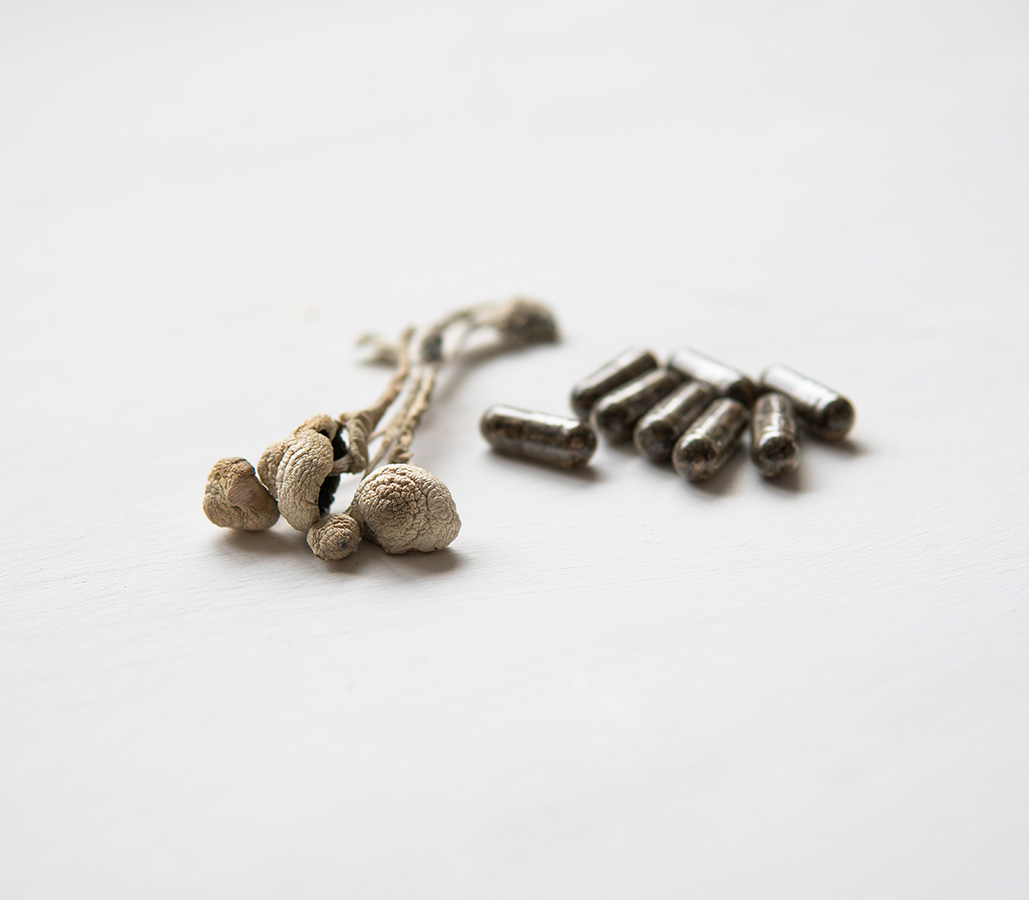 Dried Mushrooms And Shroom Capsules